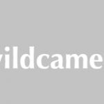 Wil jij een wildcamera kopen?
